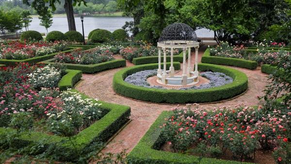 rose garden (size: funews-syndication)