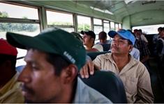 Immigration-enforce-nyt_column