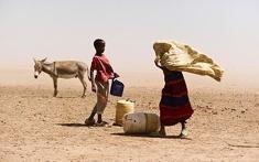 Drought_sydney_herald_235x147_column