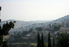 Jerusalem_irose_iroared_column