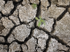 Drought_scott_olsongetty_images_column