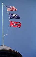 Confederate_flags_erik_perel_getty_images_column