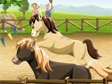 Big Farm Horses