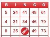 Play Bingo on BINGO!
