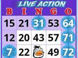 Make the Penguin Happy on Lucky Bingo!