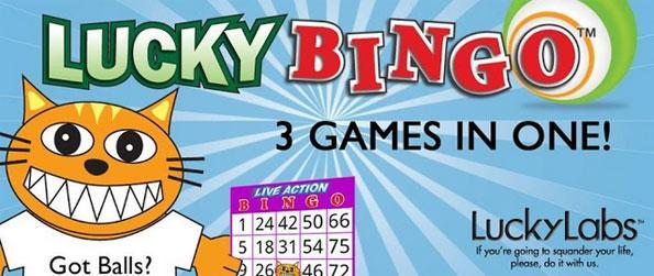 Lucky Bingo - Live Action Bingo - Play live vs. friends and other players!
