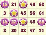 Gameplay for Mirrorball Bingo