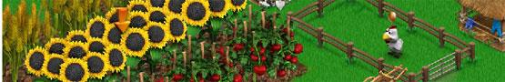 Giochi di Fattoria Gratis - Big Farm vs Farmandia