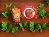 Harvest Life: Harvesting carrots