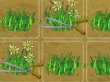 Play Mini-Game Queen's Garden Sakura Season