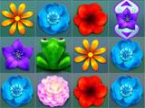 Flower Adventure Flowers