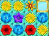 Flower Adventure Water