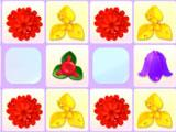 Special flowers in Fairy Flowers Deluxe