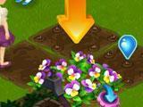 Flower Ville Harvesting