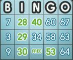 Super Bingo game
