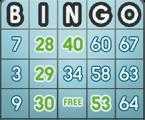 Super Bingo game