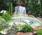 Garden Seek game
