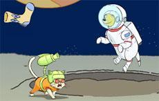 Socks in Space