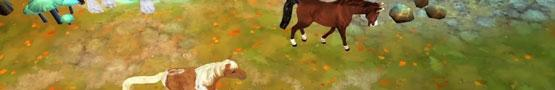 Online Paarden games - Why We Love Playing Horse Quest 3D