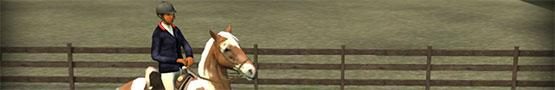 Horse Games Online - Why Horse Games Are Suitable for Boys Too?
