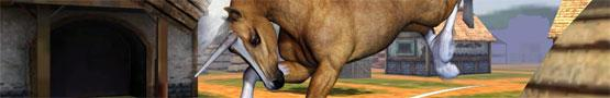 Horse Games Online - Horse Games: Yay or Neigh