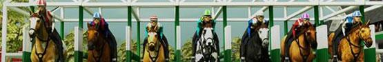 Horse Games Online - Why Horse Academy is a Step Above its Competition