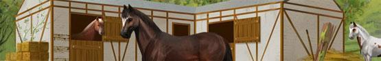 Jeux de chevaux en ligne - Howrse vs Equiverse