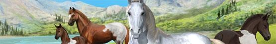 Koňské online hry - Our Horse Games Community