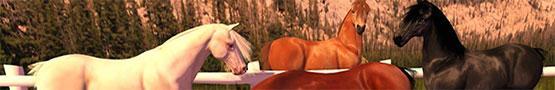 Jogos de Cavalos Online - Various