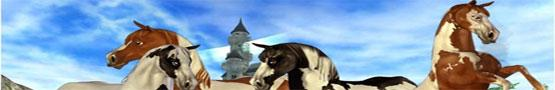 Koňské online hry - Horse Quest Games