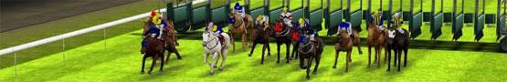 Online Paarden games - Top 5 Horse Racing Games