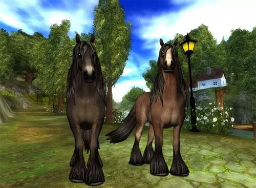 North Swedish Horses Arrive in Star Stable