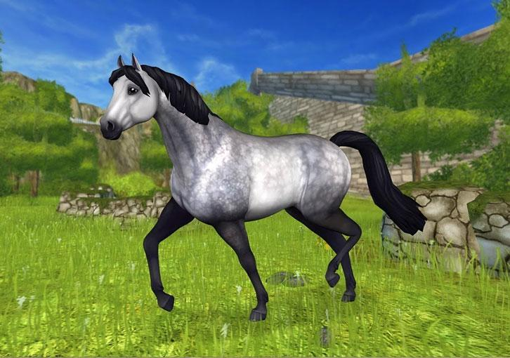 The Connemara is Coming to Star Stable on December 6th