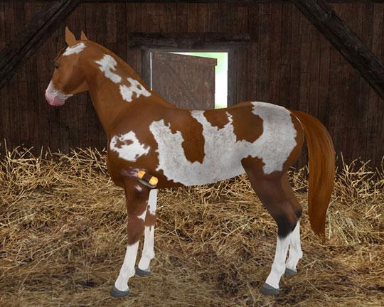 Get Planet Horse for only $2.99