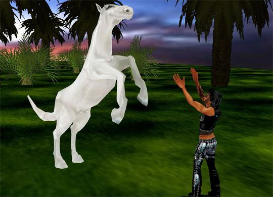 Teach your Horse Tricks in IMVU