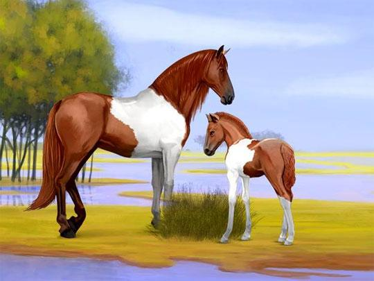 Gorgeous Mare and Foal in Howrse