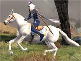 Prized Galadhrim Horse in LOTRO