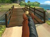 Pony Trails: Beautiful Tracks