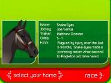 Picking a horse in Horse Racing 3D - Stay the Distance