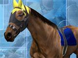 Customizing your horse in Gallop Racer 2006