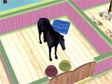 Horse Home gameplay