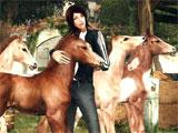 Hanging out with the foals