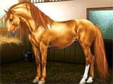 Equiverse: Horse Management