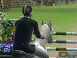 Ride: Equestrian Simulation Showjumping