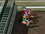 Horse Racing Park Gate