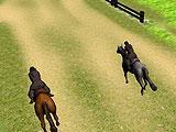 Horse Riding Adventure Race Course Start