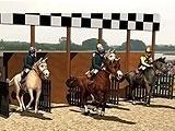 Race Start in Horse Race Derby Action