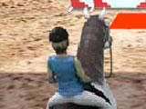Horse Jumping 3D obstacle course