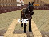 Western Cowboy Horse Rider 3D Stable