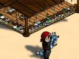 Ensemble Online Castle